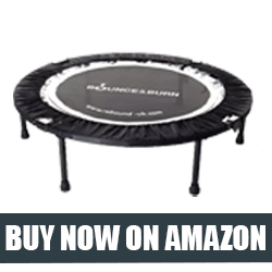 Maximus Life Bounce & Burn Mini Trampoline
